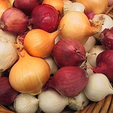 Onion - Assorted Fun Pack